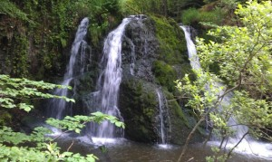 Waterfall At Fairy Glen